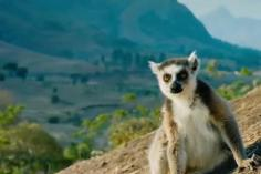 madagascar tours south