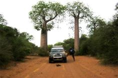 madagascar tours in west