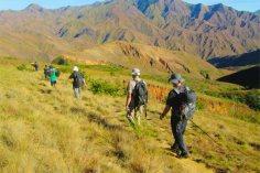 madagascar tours  trekking maromokotro