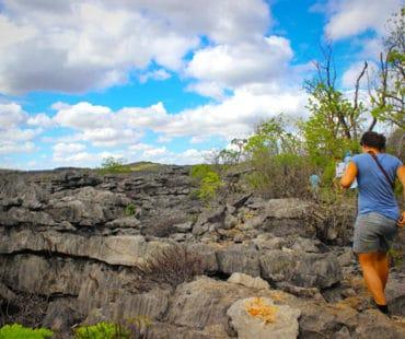 Wild trekking in Diego